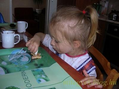 Mézeskalács (tejmentes, tejfehérje mentes, laktózmentes, szójamentes, )