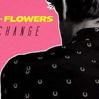 brandon flowers - i can change