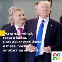 Trump és Orbán: kenyerespajtások