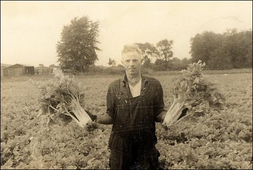 farming-in-beginning.jpg