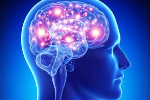 9 új tény az agykutatóktól