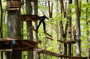 Adventure-Park-Challenge-Budapest kicsi.jpg