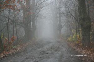 ködös út kicsi.jpg