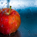A rostok kiemelt szerepe a táplálkozásban
