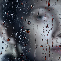 The Killing - 4. évad
