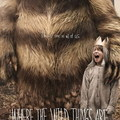 Where the Wild Things Are (Ahol a vadak várnak; 2009)