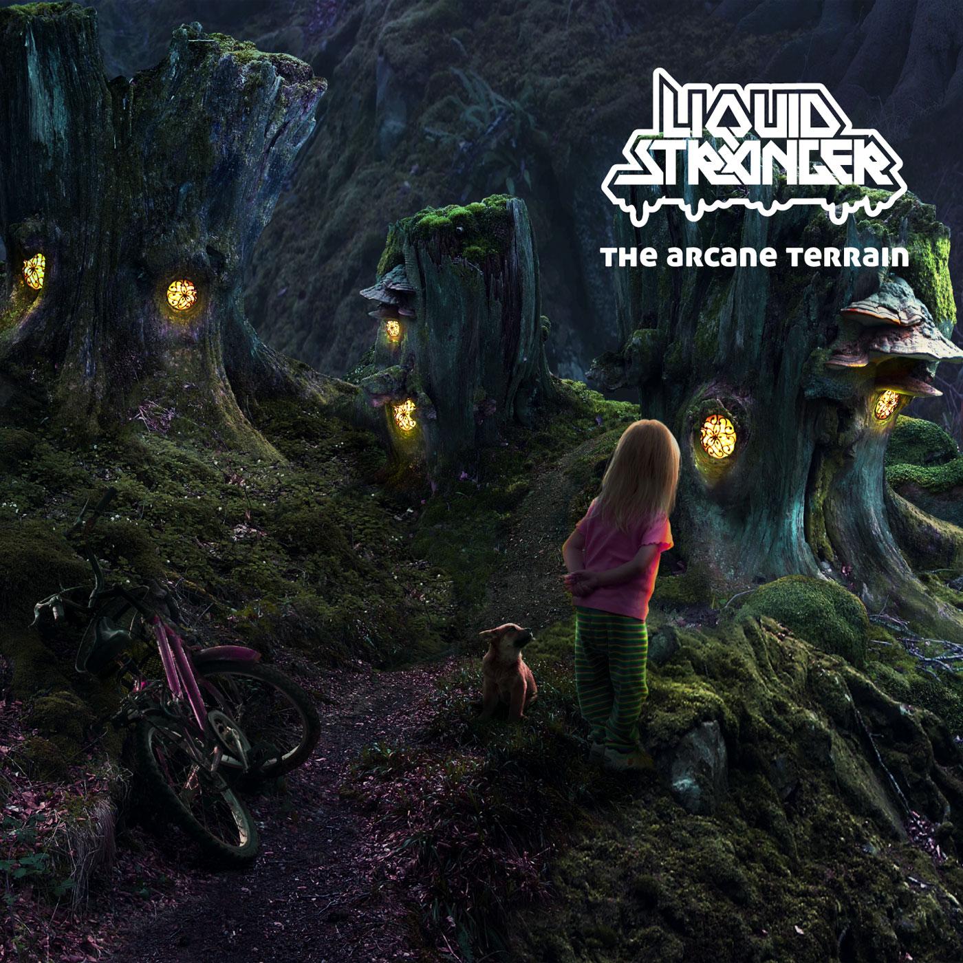 Liquid_Stranger-The_Arcane_Terrain-(ICHILLCD042)-WEB-2011.jpg