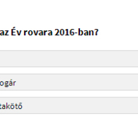 Mi legyen az Év rovara 2016-ban? Szavazz!