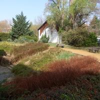 Tavaszi önkéntes kertészkedés a múzeum kertjében