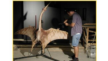 Eltűnt világok – A dinoszauruszok kora Magyarországon: így épül a kiállítás