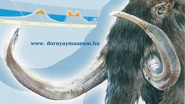 Vándorkiállításaink: Jégkorszak - Dornyay Béla Múzeum