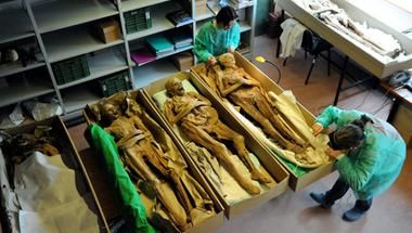 Nagy járványról mesélnek a váci múmiák génjei