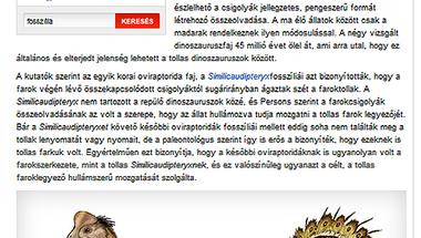 Dulai Alfréd: A pávákhoz hasonlóan udvaroltak a dinók (Origo)