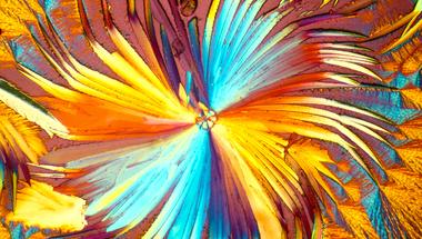 Szivárványvirág