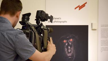 Lélegzetelállító képekkel nyított az 51. Wildlife Photographer of the Year / Év Természetfotósa kiállítás Budapesten