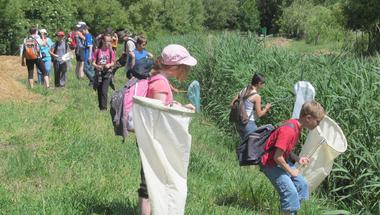 Biodiverzitás Napok: Hegymagas – 2014. június 6–7