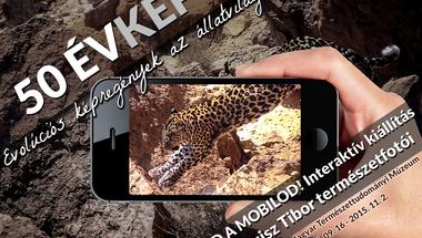 50 évkép: evolúciós képregények az állatvilágból. Hozd a mobilod!