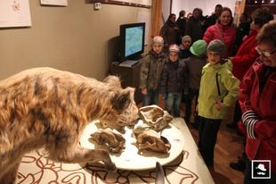 Jégkorszak a Tarisznyás Márton Múzeumban