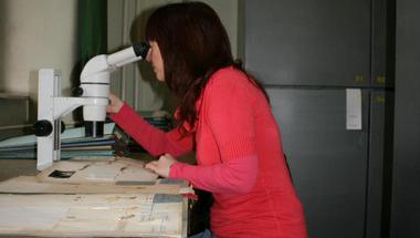 Synthesys: Nevena Kuzmanović látogatása a Növénytárban