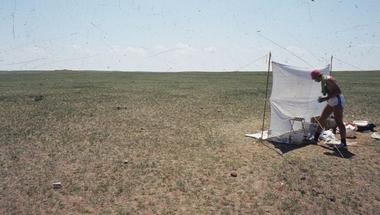 Új könyv jelent meg! A life for Noctuidae – The Owlet Moths of Márton Hreblay (1963-2000)