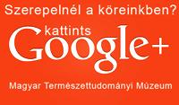 google_plusz_gomb_blogra_200.jpg