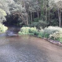 El Camino 2016, 13. nap: Cardenuela - Tardajos - 26 km