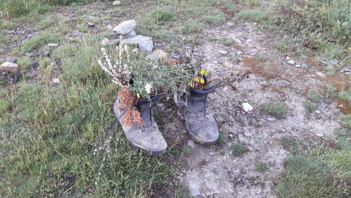 El camino, elhagyott bakancs virággal