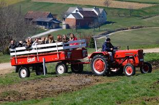 Magyar nézettség: 15. hét - Egyre mélyebben a Farm