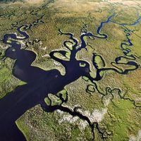 Felemelt utak – Az Everglades múltja, jelene és jövője