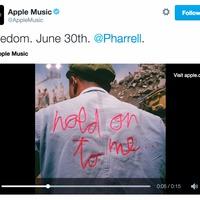 Zenei videókat fog gyártani az Apple