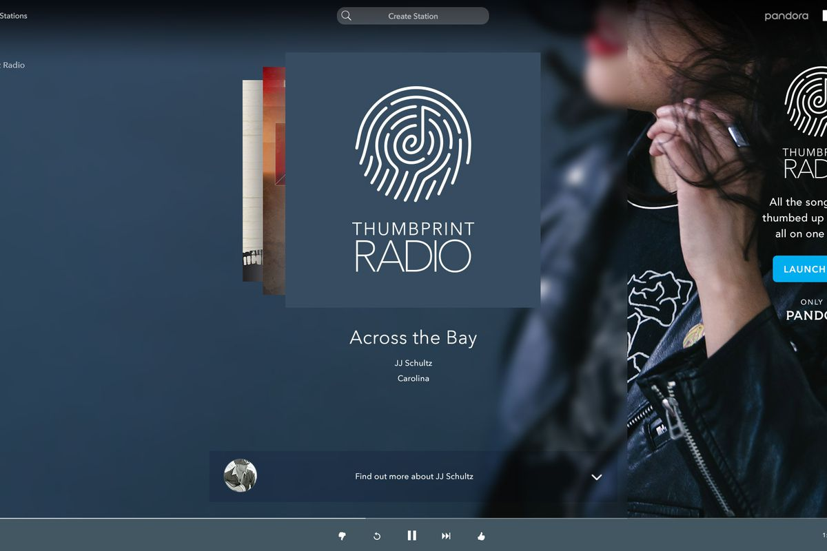 pandora-web_audio_skin_custom.jpg