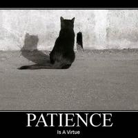 tégy kis dolgokat, nagy türelemmel!