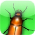 Debugger: írtsd a bogarakat