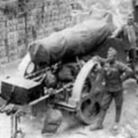 A Doberdó–fennsík védelme az első isonzói csatában