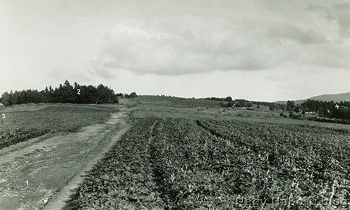 A Jabloniec gerincéről készült fotó 1937-ből
