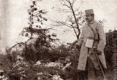 Srapnelszilánkokkal feldíszített fa