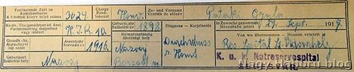 Pataki Gyula sebesülési kartonja a bécsi Kriegsarhivumból