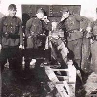 Tüzérek a Donnál - Hangulatjelentések, 1942 nyara