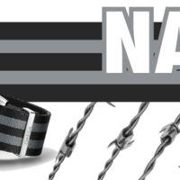 5 tény, amit tudnod kell a NATO szíjakról