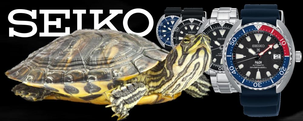seiko-baby-turtle-nmb-20171130.jpg