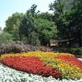 Virágcímer