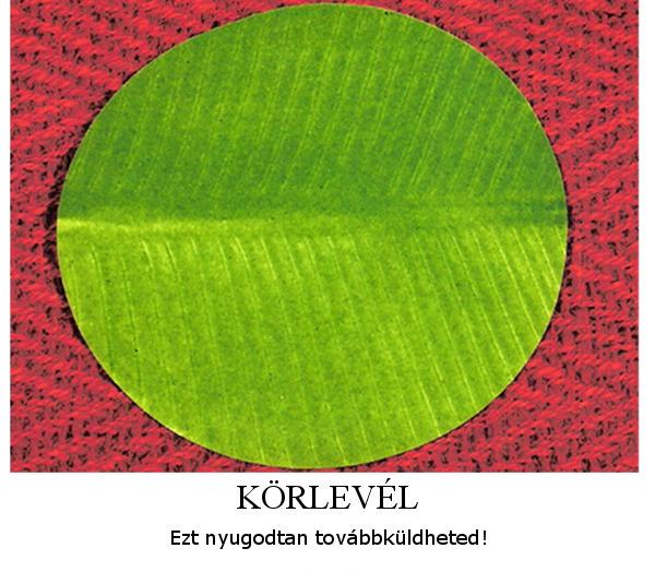 korlevell_1345481811.jpg_600x524
