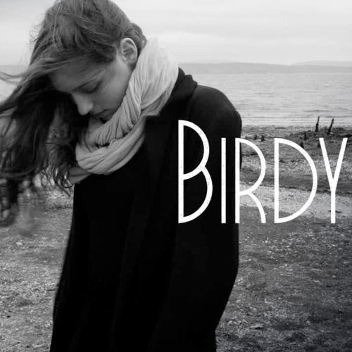 Birdy - Shelter - Napi Music