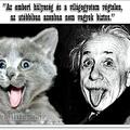 Az emberi hülyeség és a világegyetem...