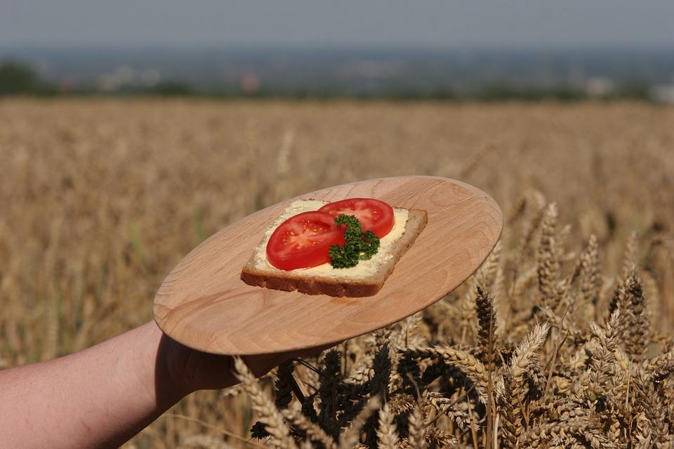 bread-408214_960_720.jpg