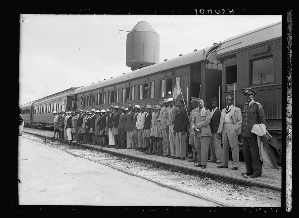 19281v.jpg