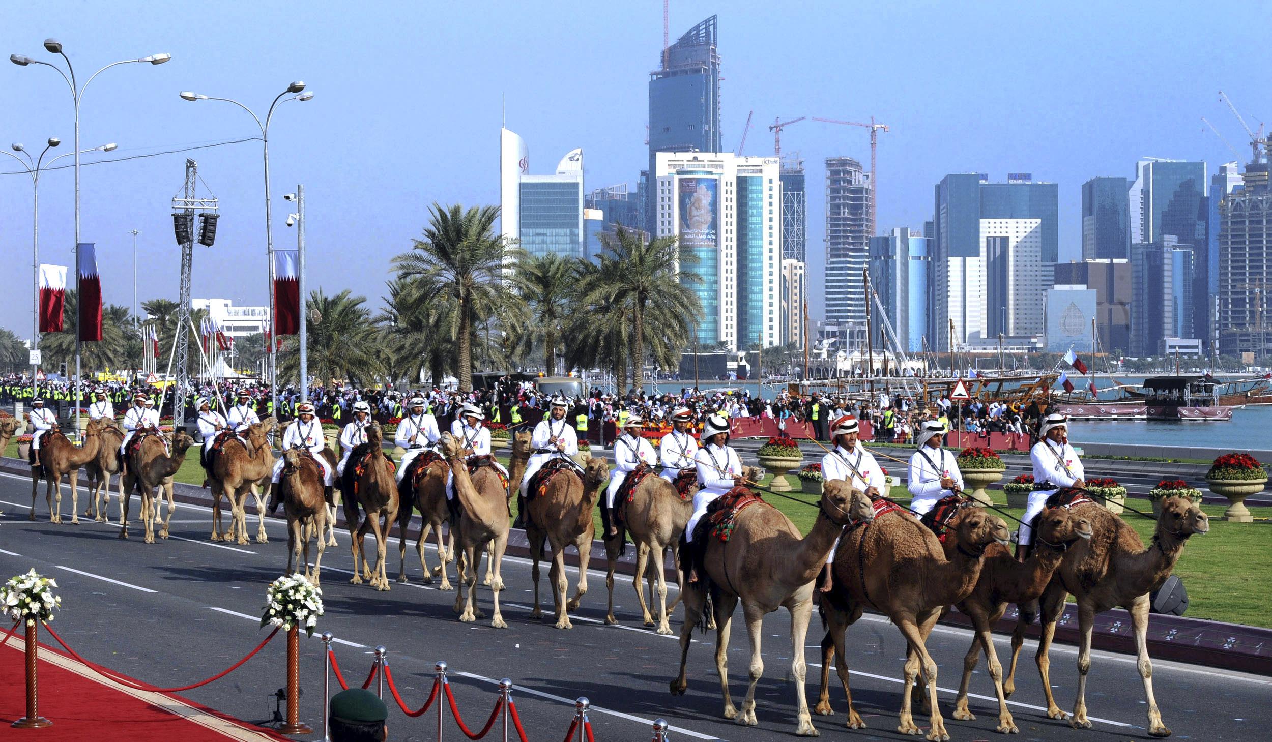 qatar_camels_enl-52fd014fd690ea5a678bb7b82394db760235fcb9.jpg