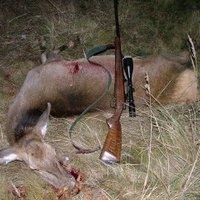 Minden vadász barbár!?