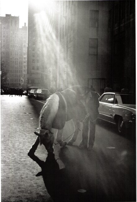 Louis Stettner, Rodeo Cowboy, Rockefeller Center, New York 1972