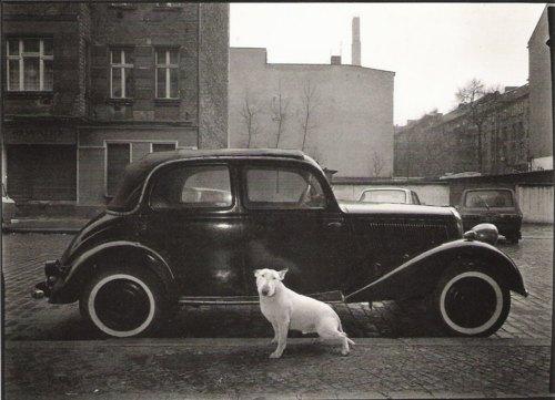 Harf Zimmermann, Hufelandstrasse, Berlin-Est. 1987<br />